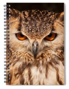 Bengal Owl Spiral Notebook