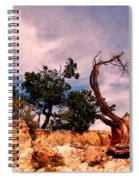 Bent The Grand Canyon Spiral Notebook
