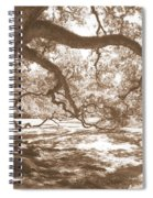 Bent Tree Spiral Notebook