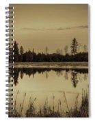 Bentley Pond Pines In Sepia Spiral Notebook