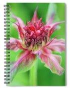 Bergamot Flower Spiral Notebook