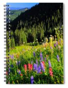 Berkeley Park Spiral Notebook