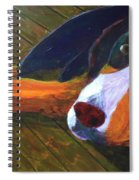 Bernese Mtn Dog On The Deck Spiral Notebook