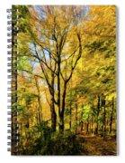Bernharts Dam 15-221 Spiral Notebook