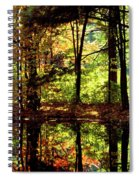 Bernharts Dam Fall 006 Spiral Notebook