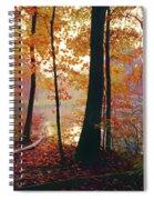 Bernharts Dam Fall 031 Spiral Notebook