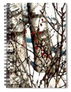 Berries And Birches Spiral Notebook