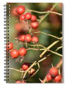 Berry Christmas  Spiral Notebook
