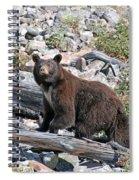 Berry Picker Spiral Notebook