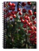 Berry Tree Spiral Notebook