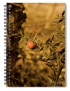 Berry  Spiral Notebook