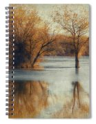 Beside Still Waters-color Spiral Notebook