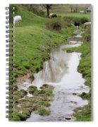 Beside The Still Waters Percherons Spiral Notebook