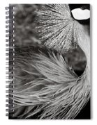 Best Feathers Ever Spiral Notebook