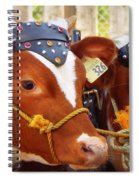 Best In Class Spiral Notebook
