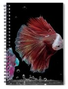 Betta0916 Spiral Notebook