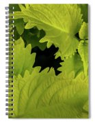 Between The Leaves Spiral Notebook
