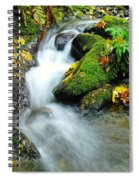 Betwixt The Mossy Rocks Spiral Notebook