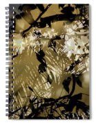 Beulahland Spiral Notebook