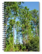 Slash Pines Spiral Notebook