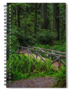 Beyond The Bridge Spiral Notebook