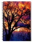Beyond The Cottonwoods Spiral Notebook