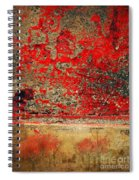 Beyond The Peeling Paint Spiral Notebook