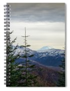 Beyond The Trees Spiral Notebook