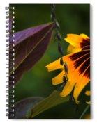 Bff's 2 Spiral Notebook