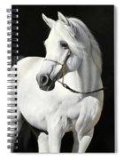 Bianco Su Nero Spiral Notebook