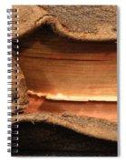 Bibeln Spiral Notebook