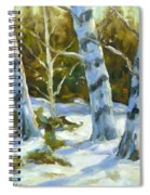 Big Birches In Winter Spiral Notebook