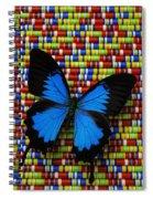 Big Blue Butterfly Spiral Notebook