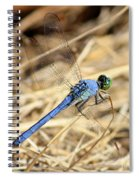 Big Blue Spiral Notebook