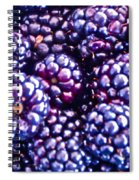 Big Boys Spiral Notebook