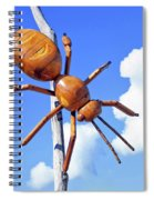 Big Bug Sculpture 1 Spiral Notebook