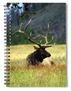 Big Bull 2 Spiral Notebook