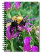 Big Bumblebee Spiral Notebook