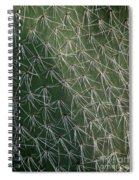 Big Cactus Pins. Close-up Spiral Notebook