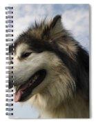 Big Dog Spiral Notebook