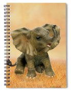 Beautiful African Baby Elephant Spiral Notebook