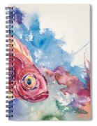 Big Eye Squirrelfish Spiral Notebook