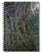 Big Fluffy Cactus Spiral Notebook