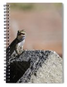 Big Grin Spiral Notebook
