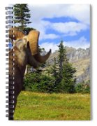 Big Horn 3 Spiral Notebook