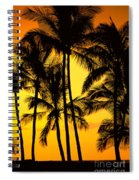 Big Island, View Spiral Notebook
