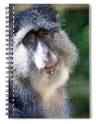 Big Lunch  Spiral Notebook