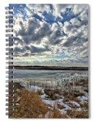 Big Marsh Spring Thaw 2 Spiral Notebook