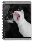 Big Mouth Pete Spiral Notebook