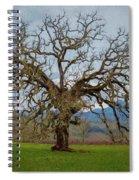 Big Oak Spiral Notebook